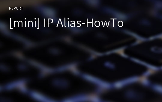 [mini] IP Alias-HowTo