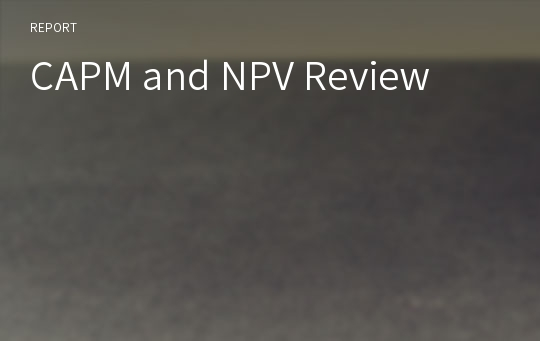 CAPM and NPV Review