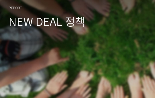 NEW DEAL 정책