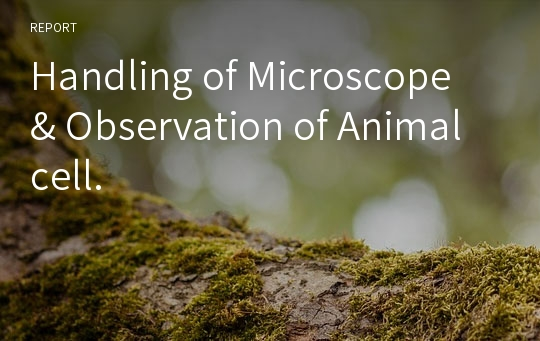 Handling of Microscope & Observation of Animal cell.
