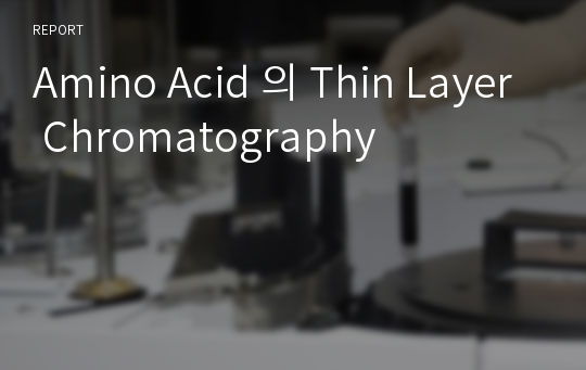 Amino Acid 의 Thin Layer Chromatography