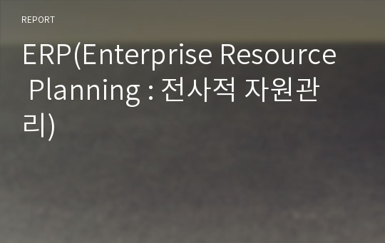 ERP(Enterprise Resource Planning : 전사적 자원관리)