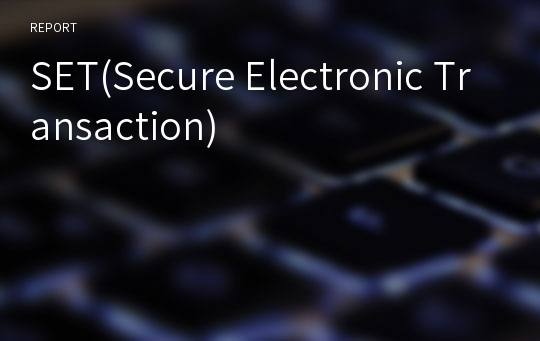 SET(Secure Electronic Transaction)