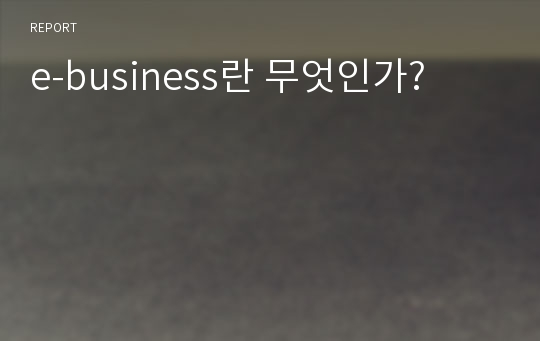 e-business란 무엇인가?