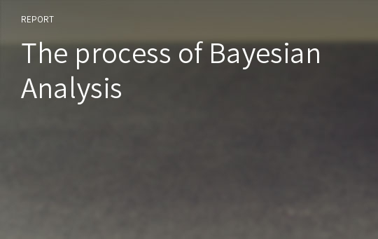 The process of Bayesian Analysis