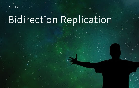 Bidirection Replication