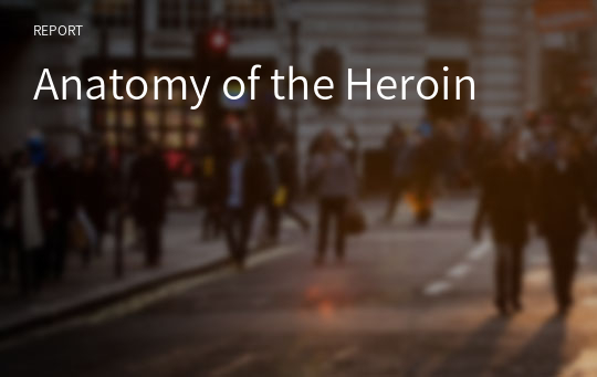 Anatomy of the Heroin