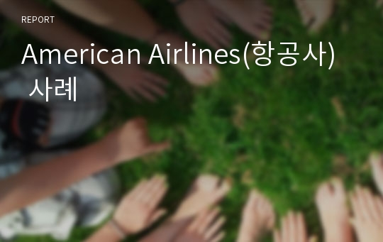 American Airlines(항공사) 사례