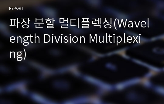파장 분할 멀티플렉싱(Wavelength Division Multiplexing)