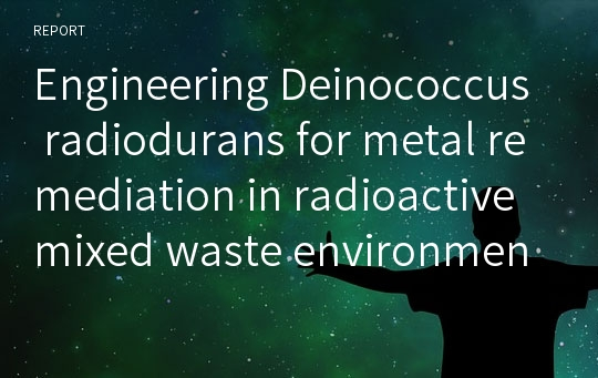 Engineering Deinococcus radiodurans for metal remediation in radioactive mixed waste environments >