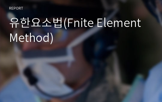 유한요소법(Fnite Element Method)