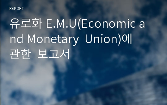 유로화 E.M.U(Economic and Monetary  Union)에  관한  보고서