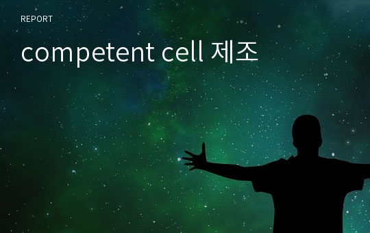 competent cell 제조
