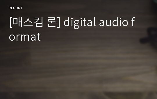 [매스컴 론] digital audio format