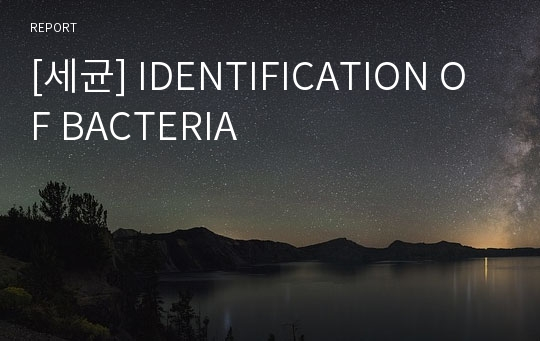 [세균] IDENTIFICATION OF BACTERIA