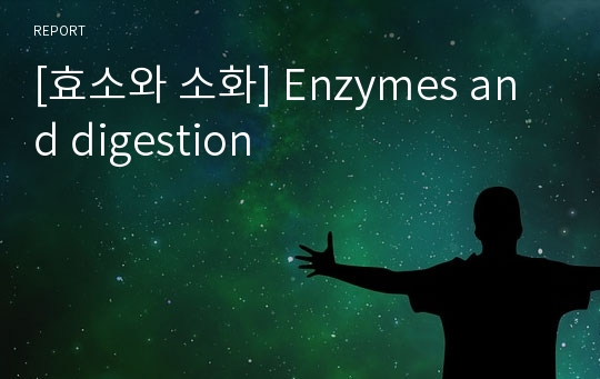[효소와 소화] Enzymes and digestion