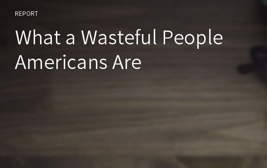 What a Wasteful People Americans Are