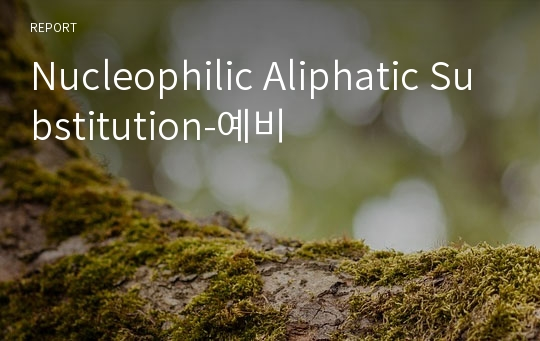 Nucleophilic Aliphatic Substitution-예비