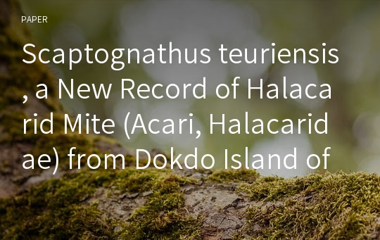 Scaptognathus teuriensis, a New Record of Halacarid Mite (Acari, Halacaridae) from Dokdo Island of Korea