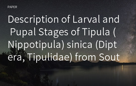 Description of Larval and Pupal Stages of Tipula (Nippotipula) sinica (Diptera, Tipulidae) from South Korea with Ecological Notes