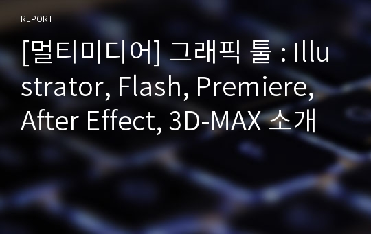 [멀티미디어] 그래픽 툴 : Illustrator, Flash, Premiere, After Effect, 3D-MAX 소개