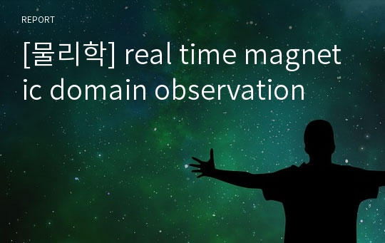 [물리학] real time magnetic domain observation