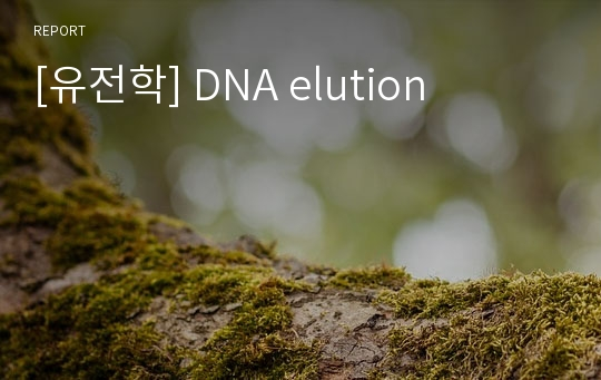 [유전학] DNA elution