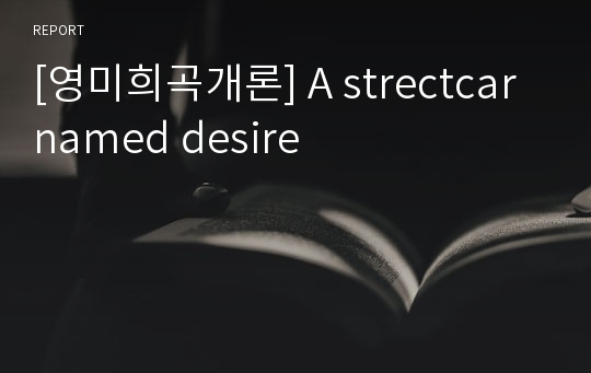 [영미희곡개론] A strectcar named desire