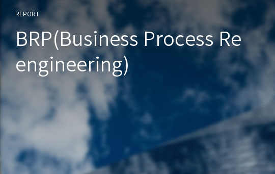 BRP(Business Process Reengineering)