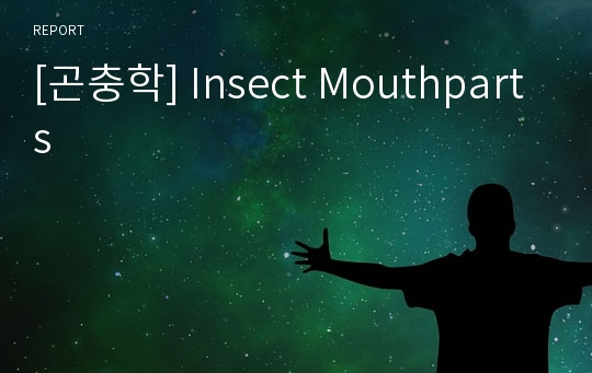 [곤충학] Insect Mouthparts