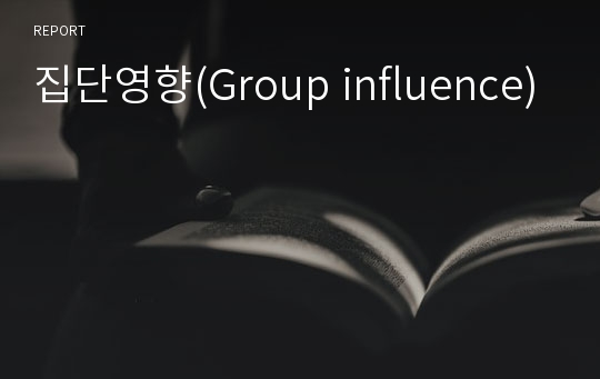 집단영향(Group influence)