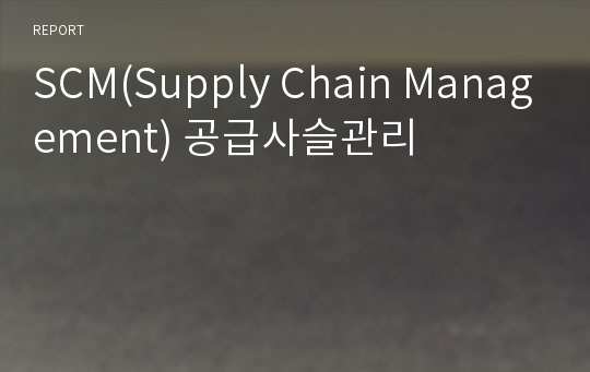 SCM(Supply Chain Management) 공급사슬관리