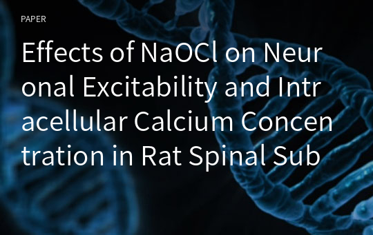 Effects of NaOCl on Neuronal Excitability and Intracellular Calcium Concentration in Rat Spinal Substantia Gelatinosa Neurons