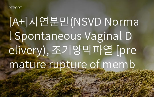 [A+]자연분만(NSVD Normal Spontaneous Vaginal Delivery), 조기양막파열 [premature rupture of membranes] 문헌고찰입니다.