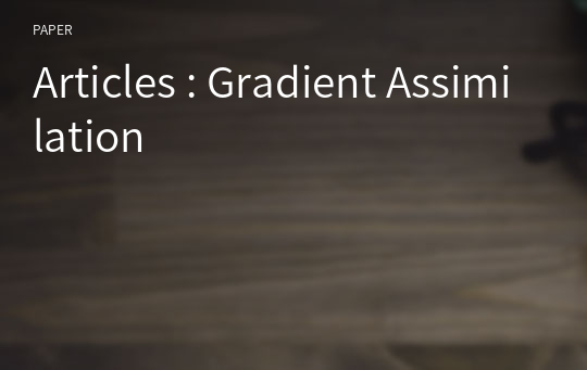Articles : Gradient Assimilation